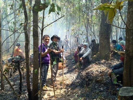 forest fires rage in northern thailand 2 - The world needs to triple its annual investment in nature by 2030 to protect land, wildlife and climate